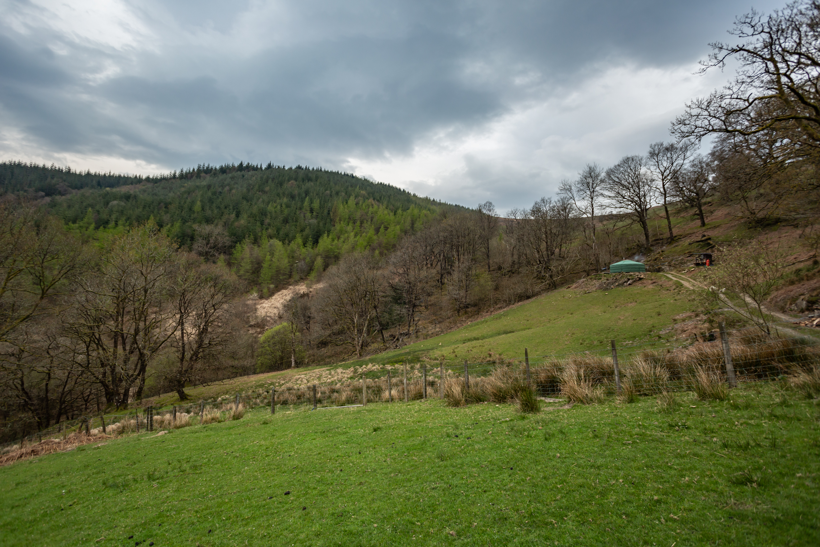 Ash-Valley-yurt (5)