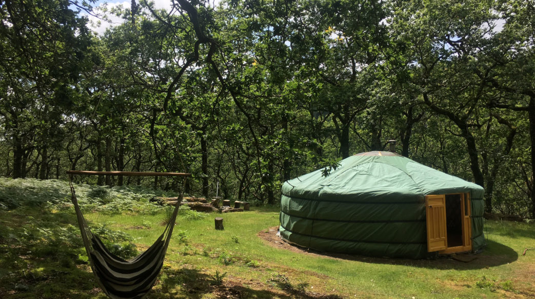 Forest yurt in meditation retreat