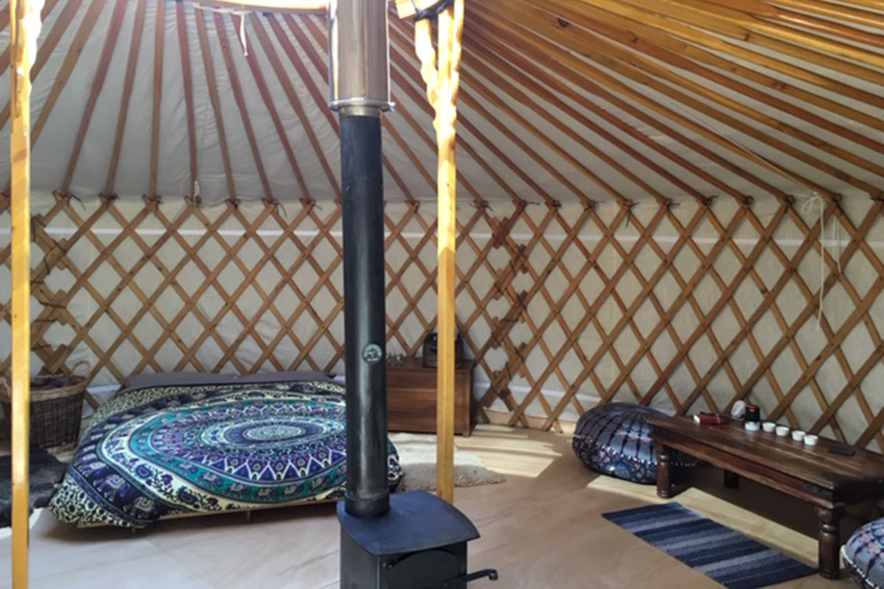 Forest-yurt-(3)-homepage