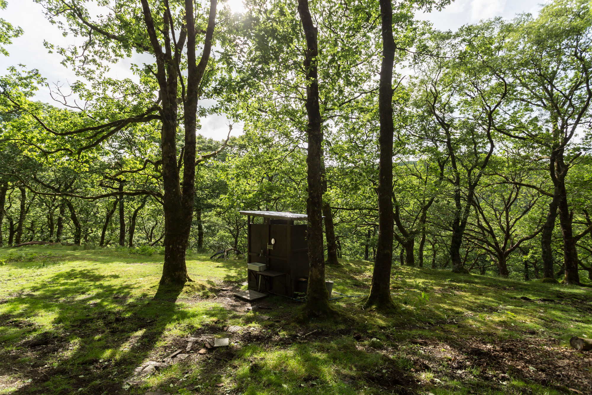 Forest-yurt-(6)
