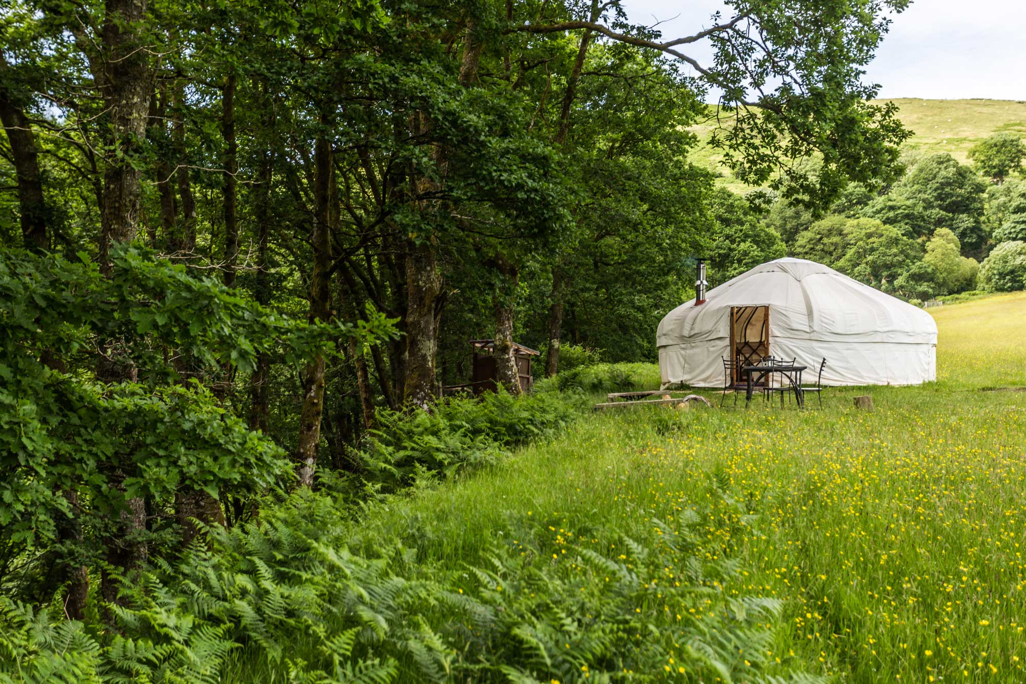Yurt holidays in beautiful wildflower meadows