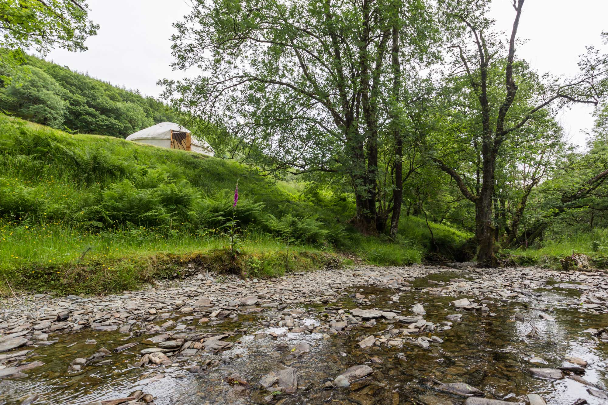 Yurt close to the river for perfect holidays
